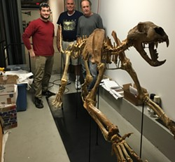Kyle Sikora, Alan Stout, Scott Terry and the North American lion skeleton - SADIE WILLIAMS