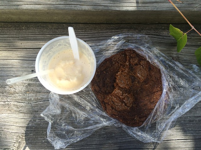 Cider float and a molasses cookie - JULIA CLANCY
