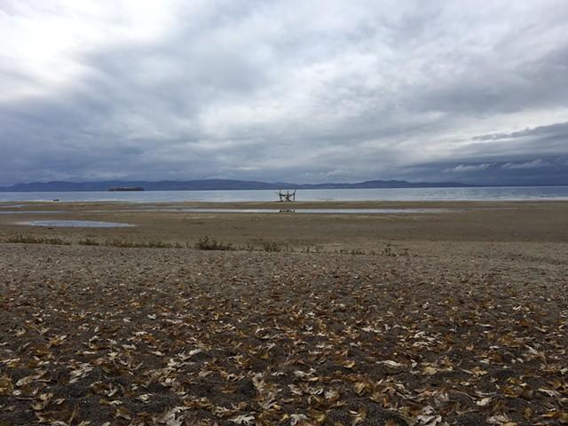 Lake Champlain from Lakeside neighborhood - CHARLOTTE SCOTT