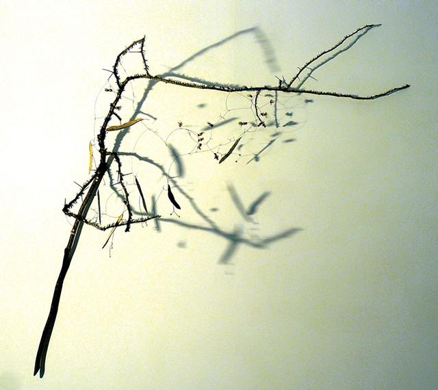 "Northern Cross"" by Brenda Garand - COURTESY OF BRENDA GARAND"