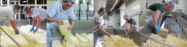 Cheesemaking at Shelburne Farms - PHOTOS COURTESY OF SHELBURNE FARMS: VERA CHANG