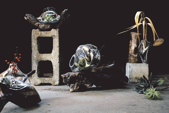 Alissa Faber's glass and wood sculptures - PHOTOS COURTESY OF KELLY DUDASH