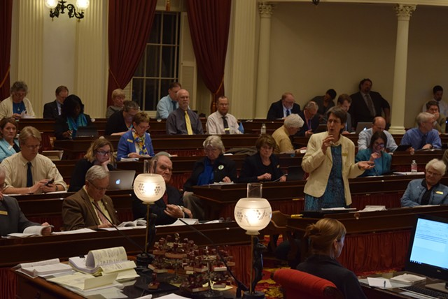 Rep. Anne Donahue (R-Northfield) discusses marijuana legalization Tuesday on the House floor. - TERRI HALLENBECK