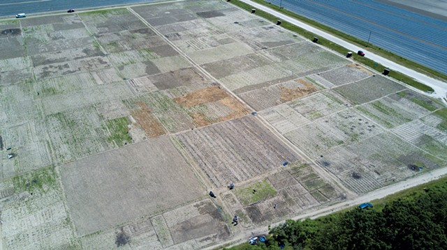 Aerial view of the gardens at Pine Island Community Farm - JAMES BUCK