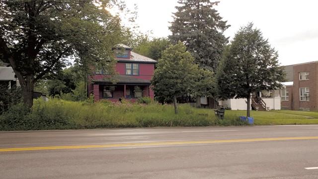 The yard at 431 Shelburne Road - JORDAN ADAMS