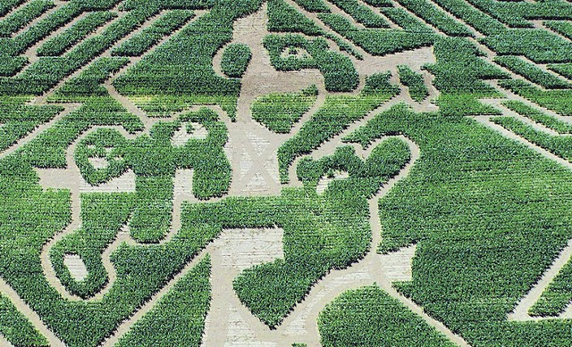 Aerial shot of the Great Vermont Corn Maze - OVER AND ABOVE PHOTOGRAPHY