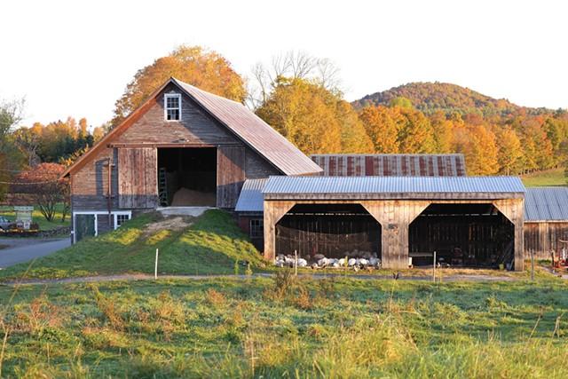 farmstays1-1-e20d2fea85b31545.jpg
