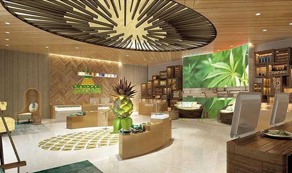 A Vermont Design Firm Updates Cannabis Marketing