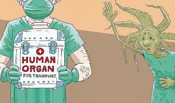 Protections Proposed for Vermont Medical Marijuana Users Who Need an Organ Transplant