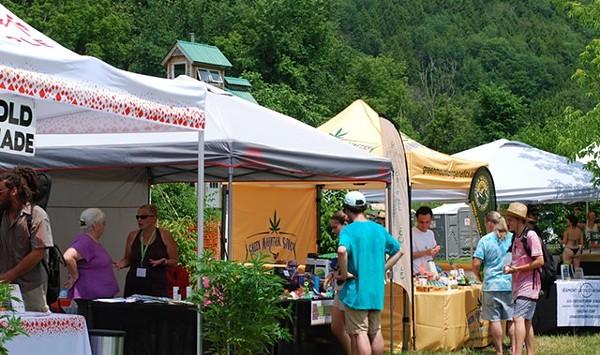 Cannabis Organization Heady Vermont Is on Hiatus