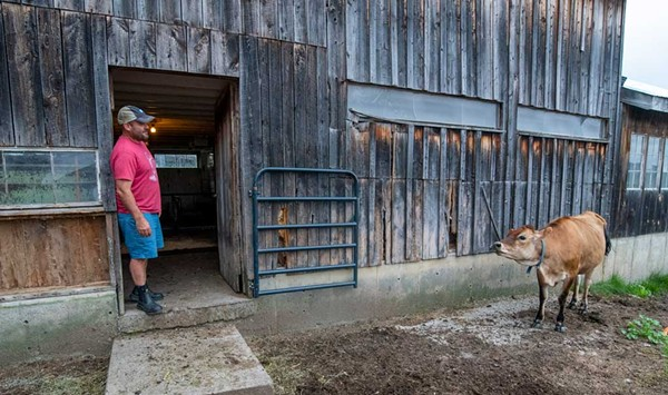 New Arrivals Tackle Life on a Big Vermont Farm in a Very Small Town