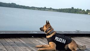 K-9 Ozzy Police Dog Is a Newport Celebrity