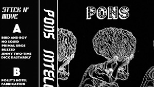 Pons, 'Intellect'