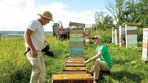 Beekeeper Chas Mraz Talks Pollinators, Pesticides and Connectedness