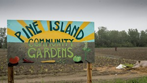 New Americans at Pine Island Farm Carry on Without Founder