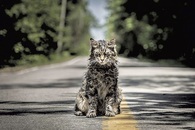 HIS FINEST GLOWER A cat named for Winston Churchill teaches us all an important lesson about death in the latest Stephen King adaptation.