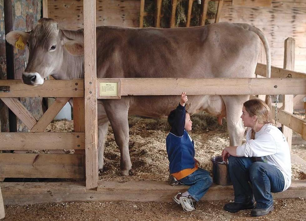 The Children's Farmyard at Shelburne Farms - COURTESY OF HUBERT SCHRIEBL