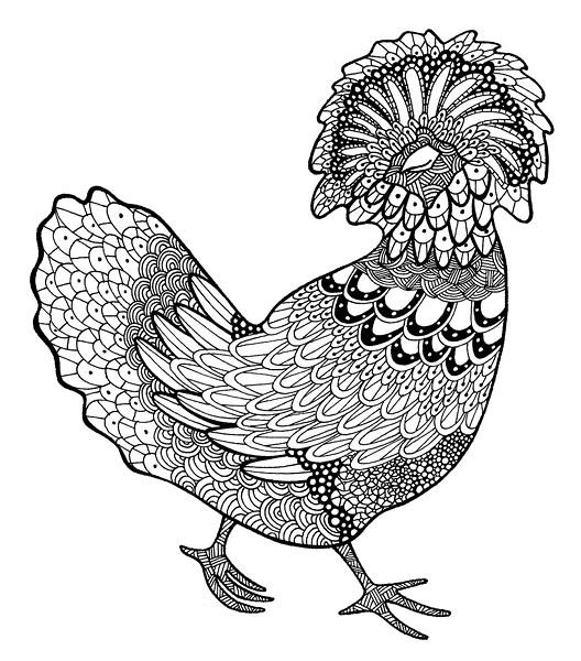 03-art-chicken.jpg