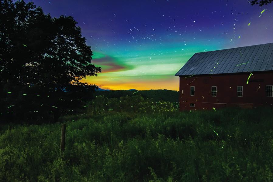"""Mark Collier, """"Fireflies"""""""