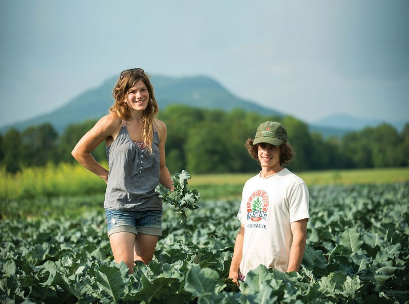 Open Farm Week - COURTESY OF DIG IN VERMONT/ANDY DUBACK