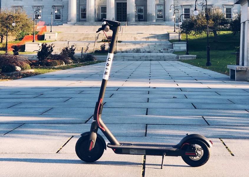 A Bird scooter - COURTESY OF BIRD