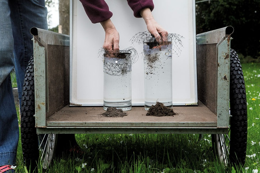 Soil stability test using samples from the garden (left) and lawn - LUKE AWTRY