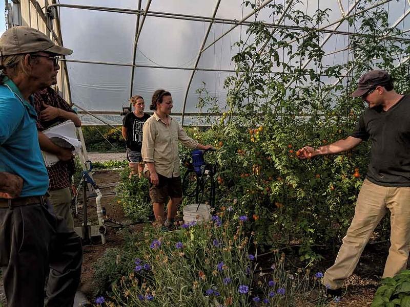 Green Mountain Girls Farm - COURTESY OF GREEN MOUNTAIN GIRLS FARM