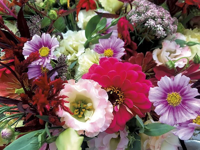 Morey Hill Farm flowers - COURTESY