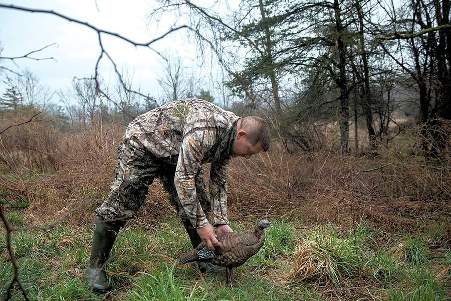 Louis Porter setting up a turkey decoy - JAMES BUCK