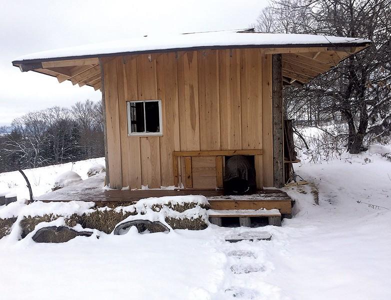 Setting Sun Tea Hut in Plainfield - SUZANNE PODHAIZER