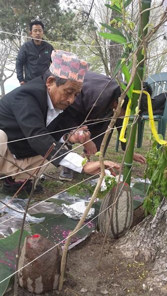 A Nepali man erecting representations of the gods of nature - KYMELYA SARI