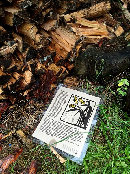 The woodpile - SALLY POLLAK