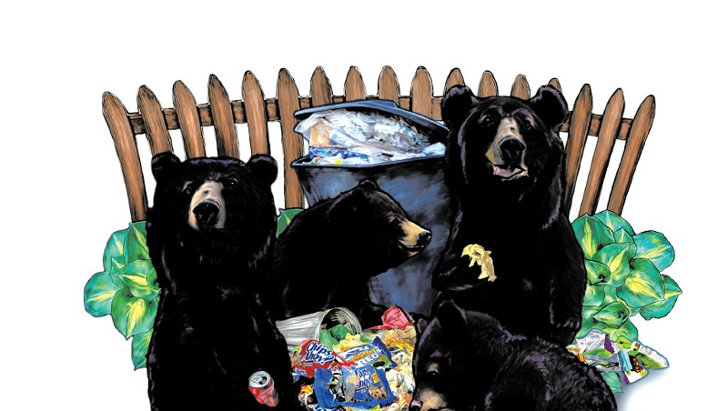 Trouble Bruin: Vermonters Are Reporting More Problems With Bears
