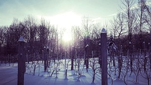 La Garagista Farm + Winery in Barnard