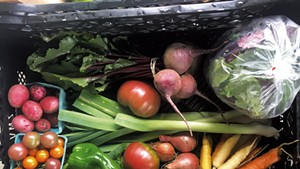 Large summer CSA share at 1000 Stone Farm in Brookfield