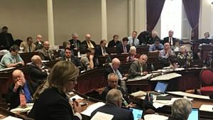 Rep. Heidi Scheuermann (R-Stowe) arguing against the minimum wage bill