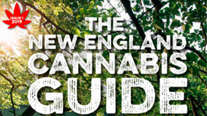 Heady Vermont's new guide