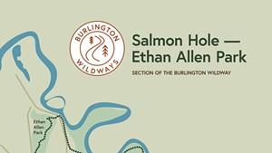 Burlington Wildway Gives Access to Urban Nature