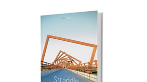 Straddle by David Cavanagh, Salmon Poetry, 66 pages. $21.