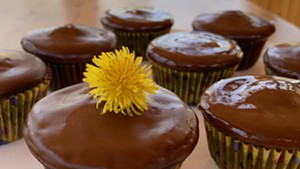 Nancy Cain's Cocoabean Cupcakes