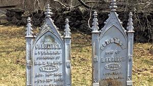 Johnson Plot Cemetary graves