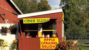 A perfect day for a cider slush at Allenholm Farm in 2019