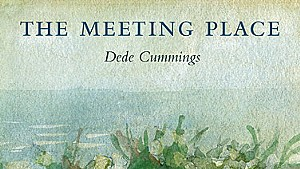 The Meeting Place by Dede Cummings, Salmon Poetry, 102 pages. $14.95.