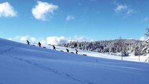Tubers climbing the sledding hill