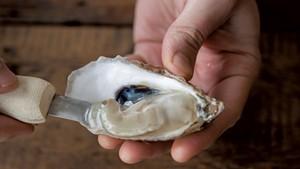 Wellfleet oysters at Caspian Oyster Depot