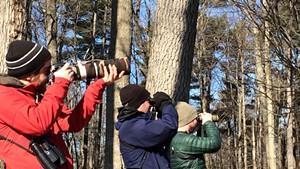 Taj Schottland, Zac Cota and Remy Lary birding in Winooski
