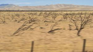 Jack O' the Clock, 'Leaving California' (2)