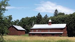 Clemmons Family Farm in 2017
