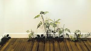 """""""Weed"""" by Tony Matelli"""