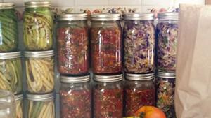 Harvest ferments: dilly beans, salsa, kimchi-kraut, oh my!